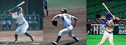 福岡6大学野球連盟